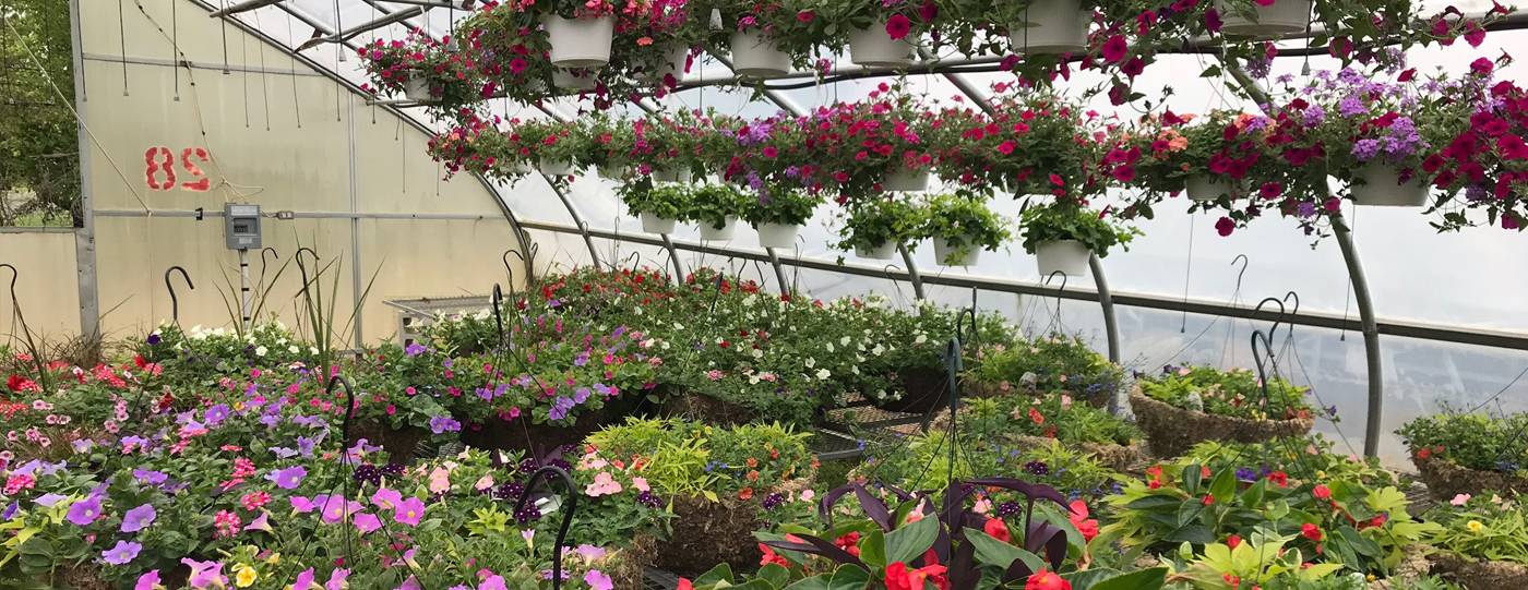 Glendale Farms – We have what you need for your Spring Planting